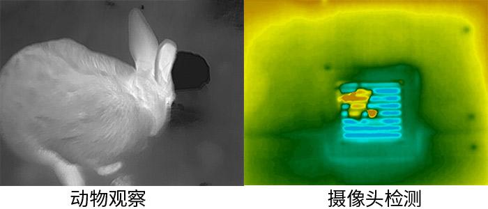 艾睿光电红外热成像仪应用于